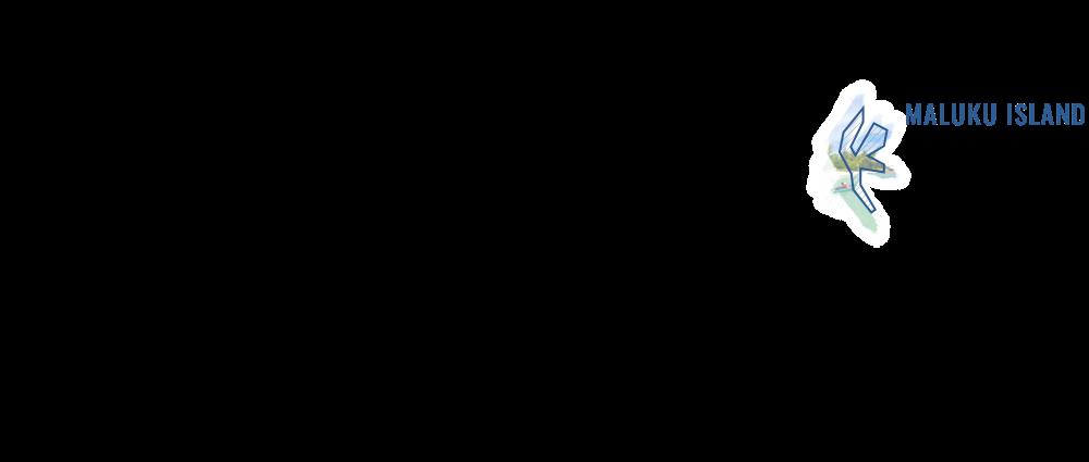 Maluku Routes
